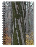 Arboreal Design Spiral Notebook