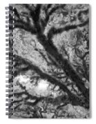 Arboreal Plateau 1 Spiral Notebook