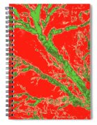 Arboreal Plateau 37 Spiral Notebook