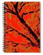 Arboreal Plateau 8 Spiral Notebook