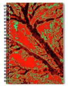 Arboreal Plateau 9 Spiral Notebook