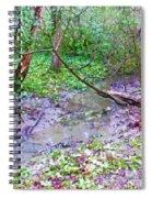 Arboretum Creek Painted Spiral Notebook