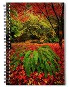 Arboretum Primary Colors Spiral Notebook