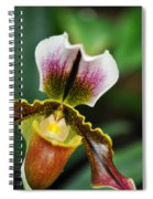 Arboretum Tropical House Orchid II Spiral Notebook