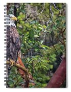 Arbutus Eagle Spiral Notebook