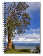 Arbutus Tree At Rathtrevor Beach British Columbia Spiral Notebook