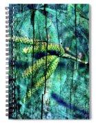 Archaic Blue Dream Spiral Notebook