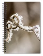 Arched Frosty Curlique Spiral Notebook