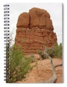 Arches Formation 24 Spiral Notebook