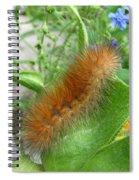 Arctia Caja Spiral Notebook