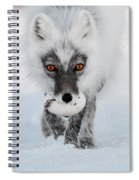 Arctic Fox And Snow Goose Egg Spiral Notebook