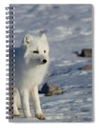 Arctic Fox Spiral Notebook