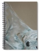 Arctic Frolic Spiral Notebook