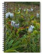 Arctic Gentian Blooming In The Alpine Spiral Notebook