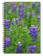 Arctic Lupine Lupinus Ancticus Spiral Notebook