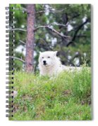 Arctive Wolf Lying Down Spiral Notebook