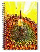 Are You Looking At Me - Butterfly Spiral Notebook