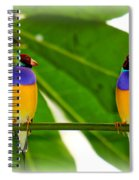 Are You Serious? Spiral Notebook