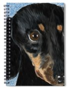 Are You Sure You Want The Rest Of That Sandwich? Spiral Notebook