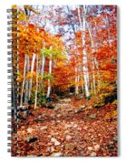 Arethusa Falls Trail Spiral Notebook
