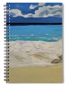 Argonauts Spiral Notebook
