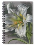 Arise Spiral Notebook