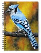 Aristocrat Spiral Notebook