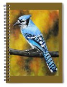 Aristocrat Spiral Notebook