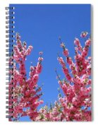 Arizona 3 Spiral Notebook
