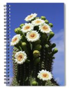 Arizona State Flower- The Saguaro Cactus Flower Spiral Notebook