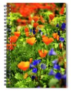 Arizona Wildflowers Spiral Notebook