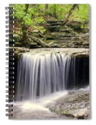 Arkansas Beauty Spiral Notebook
