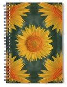 Around The Sunflower Spiral Notebook