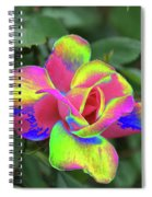 Array Of Color Spiral Notebook