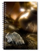 Arrowhead Spiral Notebook