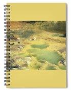 art 688 Eliot Porter Spiral Notebook