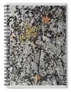 art 744 Eliot Porter Spiral Notebook