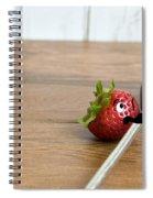 Art Class Spiral Notebook