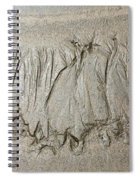 Art Created By Nature On Sand  Spiral Notebook