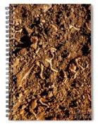 Art Of A Dinosaur Dig Spiral Notebook