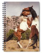 Art Of The Fight Spiral Notebook