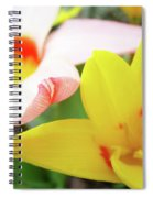 Art Prints Pink Tulip Yellow Tulips Giclee Prints Baslee Troutman Spiral Notebook