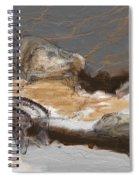 Art Rupestre Spiral Notebook