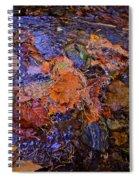 Arte Por Los Suelos Chapter Iv Spiral Notebook