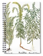 Artemisiae & Reseda Spiral Notebook