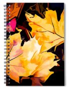 Artful Maple Leaves Spiral Notebook