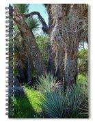 Arthur B Ripley Desert Woodland State Park Spiral Notebook