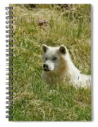 Artic Wolf 2 Dry Brushed Spiral Notebook