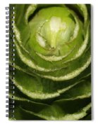 Artichoke Close-up Spiral Notebook