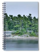 Artistic Granite And Trees  Spiral Notebook